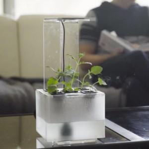 "Virale Idee ""Hand-Made Living Decor"""