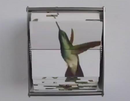 "Virales Video ""Laute Wandkunst"""