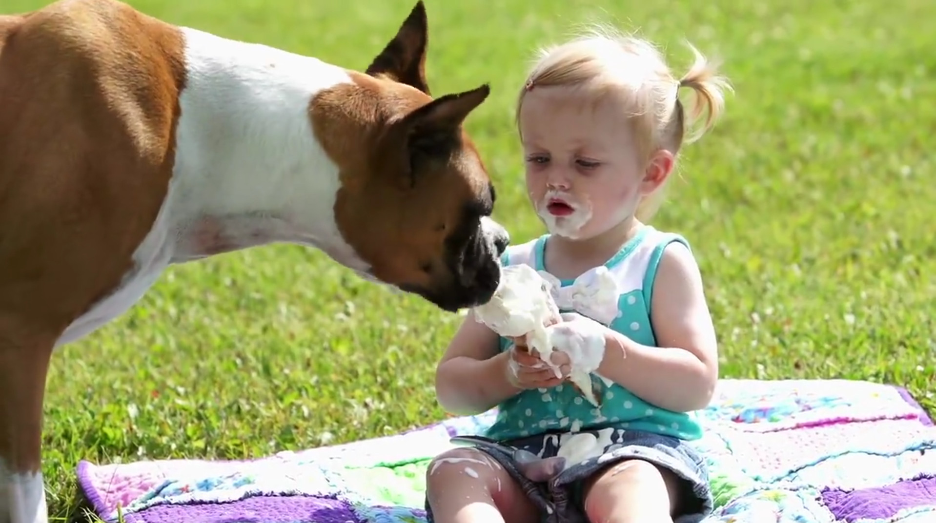 virales video hund isst eis von diesem kind und wird ber mal gesehen hund eis essen. Black Bedroom Furniture Sets. Home Design Ideas