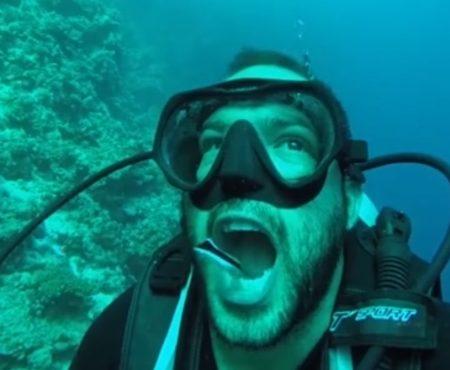 """Virales Video """"Taucher lässt seine Zähne an einer Bucht in Dahab, Ägypten vor der Halbinsel Sinai Peninsula von einem kleinen Fisch reinigen"""""""