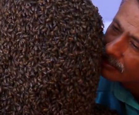 """Virales Video """"22-jähriger Mann aus Indien bricht Weltrekord im Tragen von 60.000 Bienen in seinem Gesicht für 4 Stunden und 10 Minuten"""""""