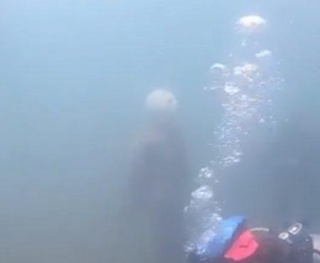 """Virales Video """"Taucher finden im berüchtigten Lake Pleasant in Phoenix, Arizona ein Fake-Jason Voorhees unter Wasser"""""""